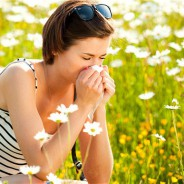TCM and Hayfever